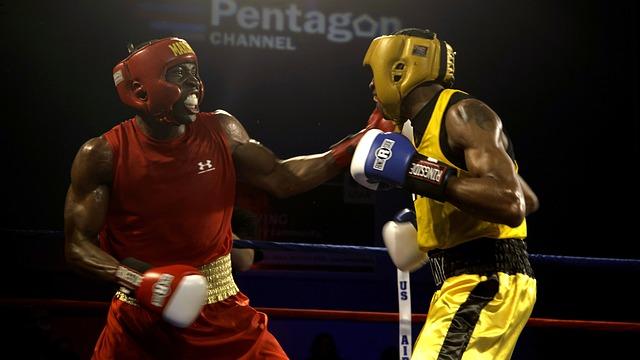 boxers-652388_640